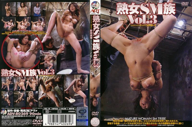 熟女SM族 Vol.3 野崎美香 (DOD)