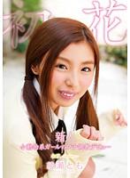 47adz312新人 小動物系ガールのプチ調教デビュー 初花-hatsuhana- 綾瀬とも