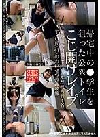 [IBW-728z] Public Bathroom Lockpick Violation Of Schoolgirls On The Way Home