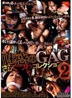 魅惑のGAG・さるぐつわコレクション2【アウトレット】