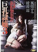 DD-213 - 巨乳隷嬢3 風間ゆみ×綾波涼  - JAV目錄大全 javmenu.com
