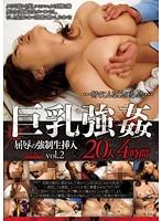 巨乳強姦 屈辱の強制生挿入20人4時間 vol.2