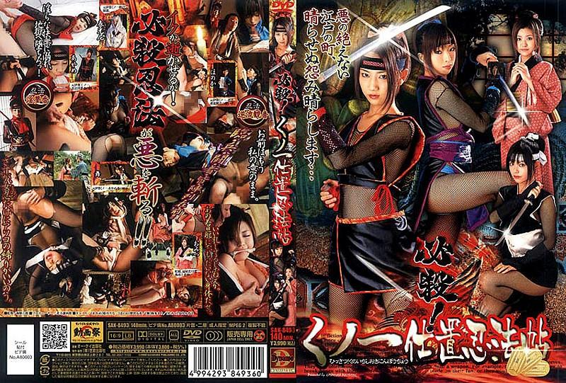 SAK-8493 Hissatsu! Punishment Ninja Kunoichi (Kasakurashuppan Sha) 2008-05-30
