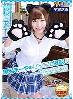 [MDTM-303] Black Cat Mamiya's (Horny) Grace Repayment Misaki Maya