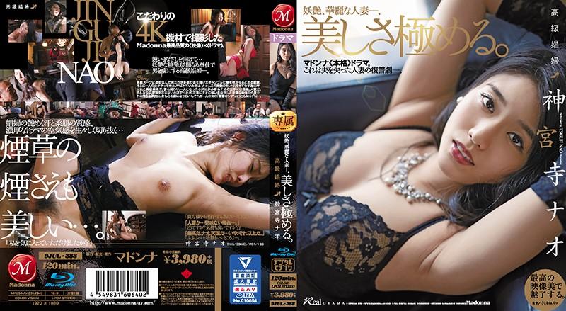 高級娼婦 神宮寺ナオ 妖艶、華麗な人妻―、美しさ極める。 (ブルーレイディスク)