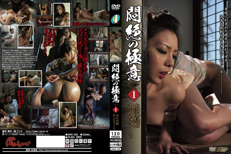 AKHO-028 Sakura Maki Mizusawa Such A Secret Of Lesbian Couples