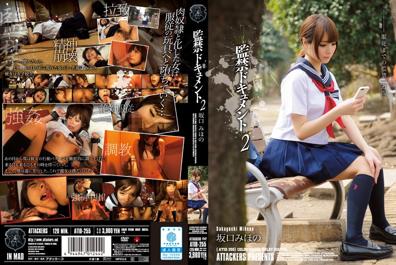 ATID-255 Confinement Document 2 Sakaguchi Mihono