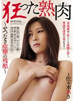 ATID-273 Crazy Ripe Meat ~ Setsunaki Cruel ~ Aki Sasaki Of Convulsions