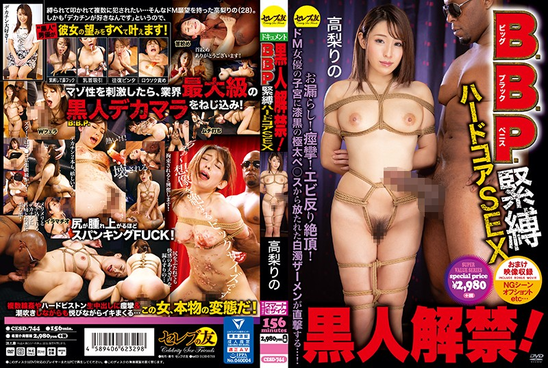 [CESD-744] Release Of The Black Man! Hard Core S&M Sex With A B.B.P. (Big Black Penis) Rino Takanashi