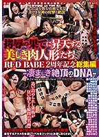 拷辱の果てに昇天する美しき肉人形たち RED BABE 2周年記念総集編-凄まじき絶頂のDNA-