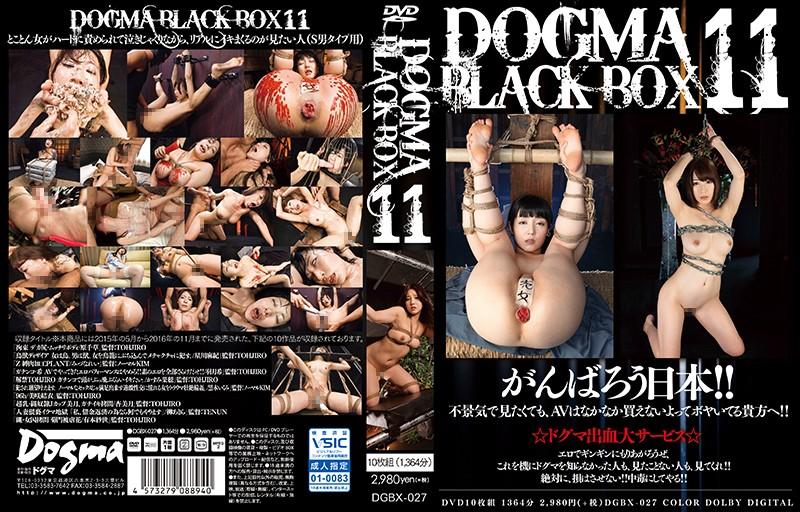 [DGBX-027] DOGMA BLACK BOX 11 星川麻紀 SM 縛り・緊縛 アナルセックス 10枚組 ドグマ みづなれい(みずなれい)