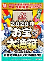 【数量限定】2020年お宝大漁箱 超お得!!AVS collector's M男・女装・調教・etcセット