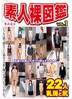 素人裸図鑑 VOL.1【激安アウトレット】
