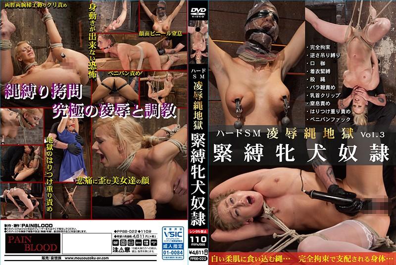 [gkppbb022] ハードSM 凌辱縄地獄 Vol.03 緊縛牝犬奴隷