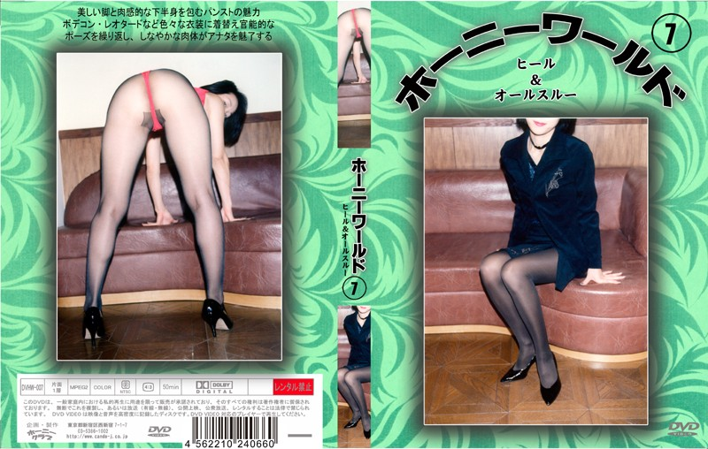 DVHW-007 Horny World 7