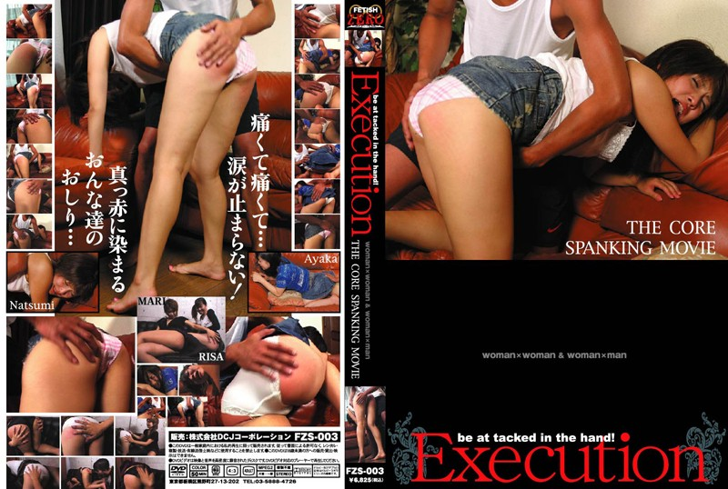 FZS-003 Execution (C-format) 2007-11-20