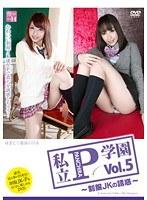 私立P(パンチラ)学園 ~制服JKの誘惑~ Vol.5