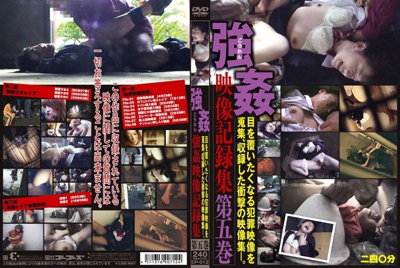 強姦映像記録集 第五巻
