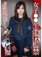 女子○○生 拉致監禁 25 笹木晴