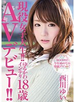 現役女子大生!!ゆるかわインテリ18歳 AVデビュー!! 西川ゆい
