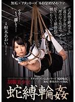 制服美少女 蛇縛輪姦 無垢×アタッカーズ 本格緊縛SMドラマ 枢木あおい MUDR-091画像