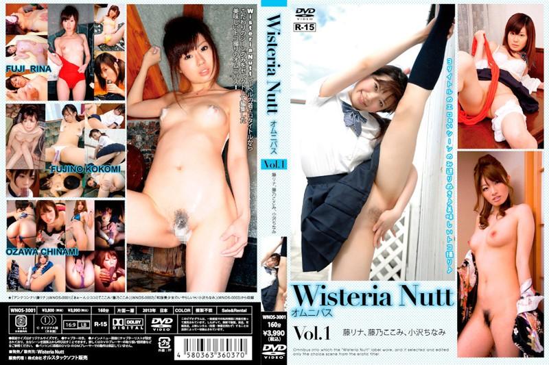WNOS-3001 Wisteria Nutt Omnibus Vol.1 (Orustak Pictures) 2013-06-28