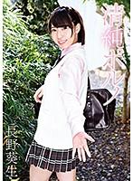 【DVD】清純ポルノ/長野葵生