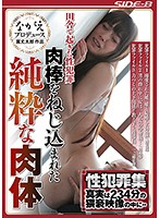 田舎で起きた性犯罪 肉棒をねじ込まれた純粋な肉体 NSPS-729画像