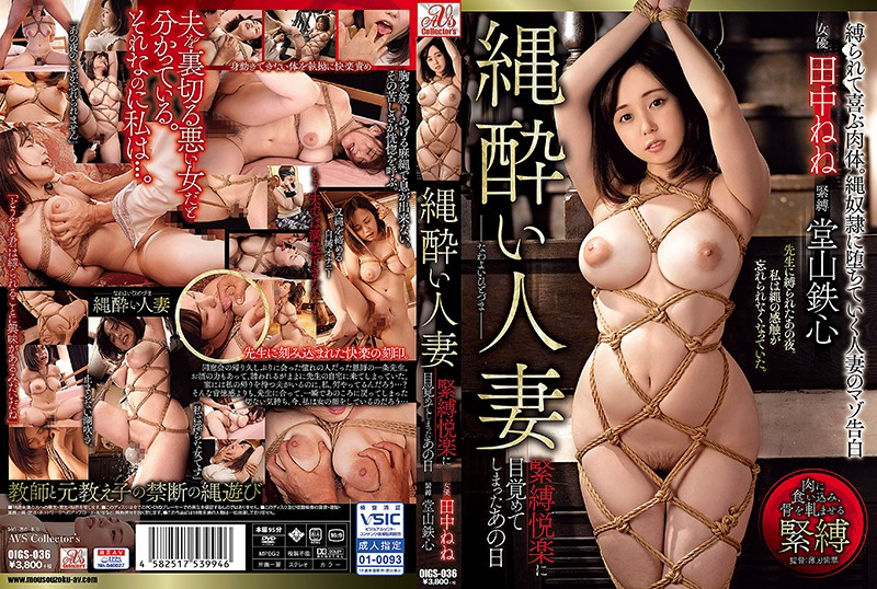 OIGS-036