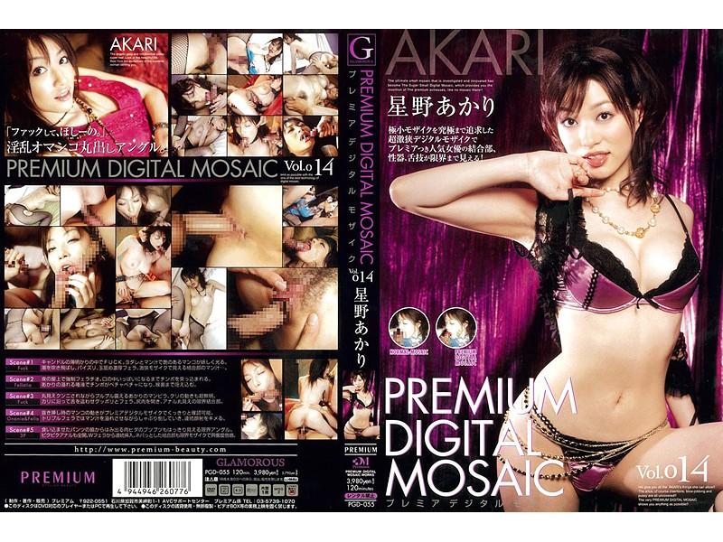 PGD-055 Akari Hoshino Premier Digital Mosaic Vol.014