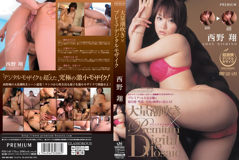 "PGD-145 Shou Nishino í"" Premier Digital Mosaic Massive Squirting"