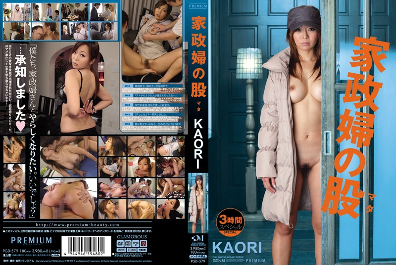 PGD-579 KAORI Crotch Housekeeper