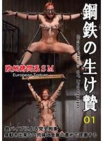 鋼鉄の生贄 vol.01