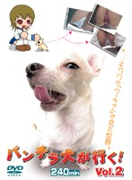 パンチラ犬が行く! Vol.2
