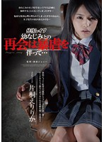 SHKD-490 Katagiri Eririka - Accompanied By Violence Reunion With Childhood Friend Is Innocent Rape