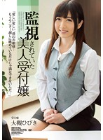 SHKD-565 Ootsuki Hibiki - Beauty Receptionist, Which Has Been Monitoring