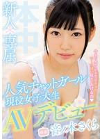 【DMM限定】新人*専属人気チャットガール現役女子大生AVデビュー!! 音ノ木さくら 生写真3枚付き