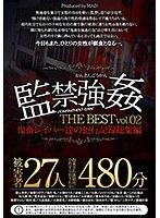 監禁強姦 THE BEST 鬼畜レイパー達の犯行記録総集編 vol.02 性欲まみれの鬼畜に欲望のまま犯された女達27人。(2枚組)
